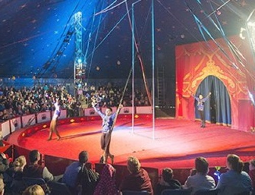 FCL are Proud to Support The Circus with a Purpose